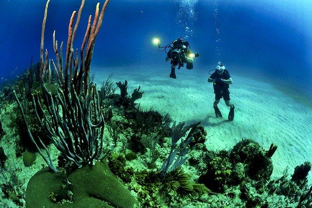 divers diving