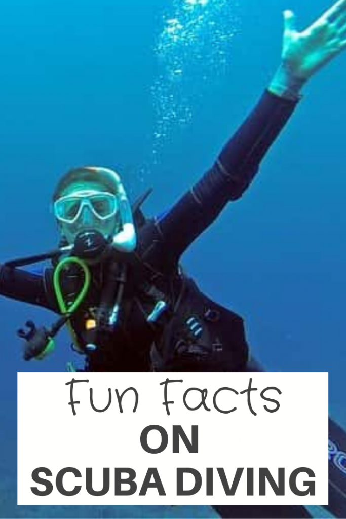 Fun facts On Scuba Diving