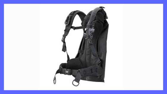 winged bcd